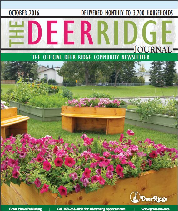 october-deer-ridge-newsletter-cover